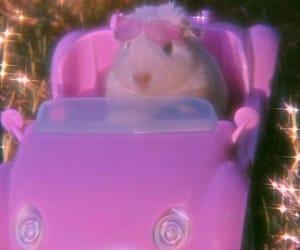 aesthetic, fashion, and guinea pig image
