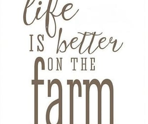 country, farm, and life image