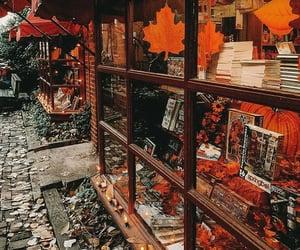 autumn, fall, and books image
