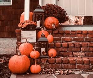autumn, fall, and home decor image