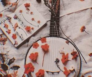 aesthetic, music, and banjo image