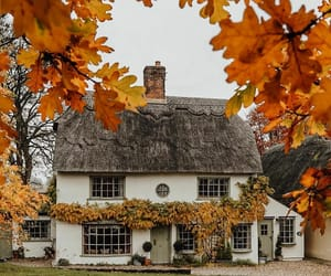 cozy, architecture, and autumn image