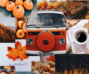 background, Collage, and fall image