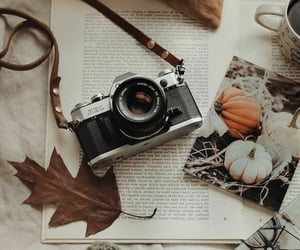 autumn, camera, and coffee image