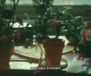 innocent, movie, and plants image
