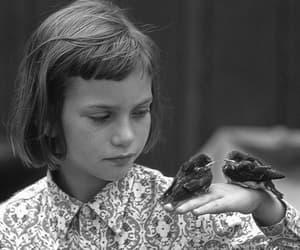 girl, bird, and child image