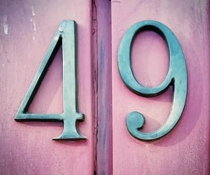 pink, 49, and numbers image