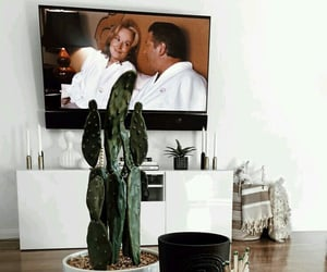 cactus, home decor, and statues image