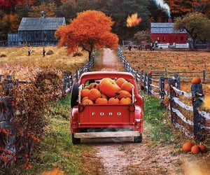 autumn, fall, and pumpkins image
