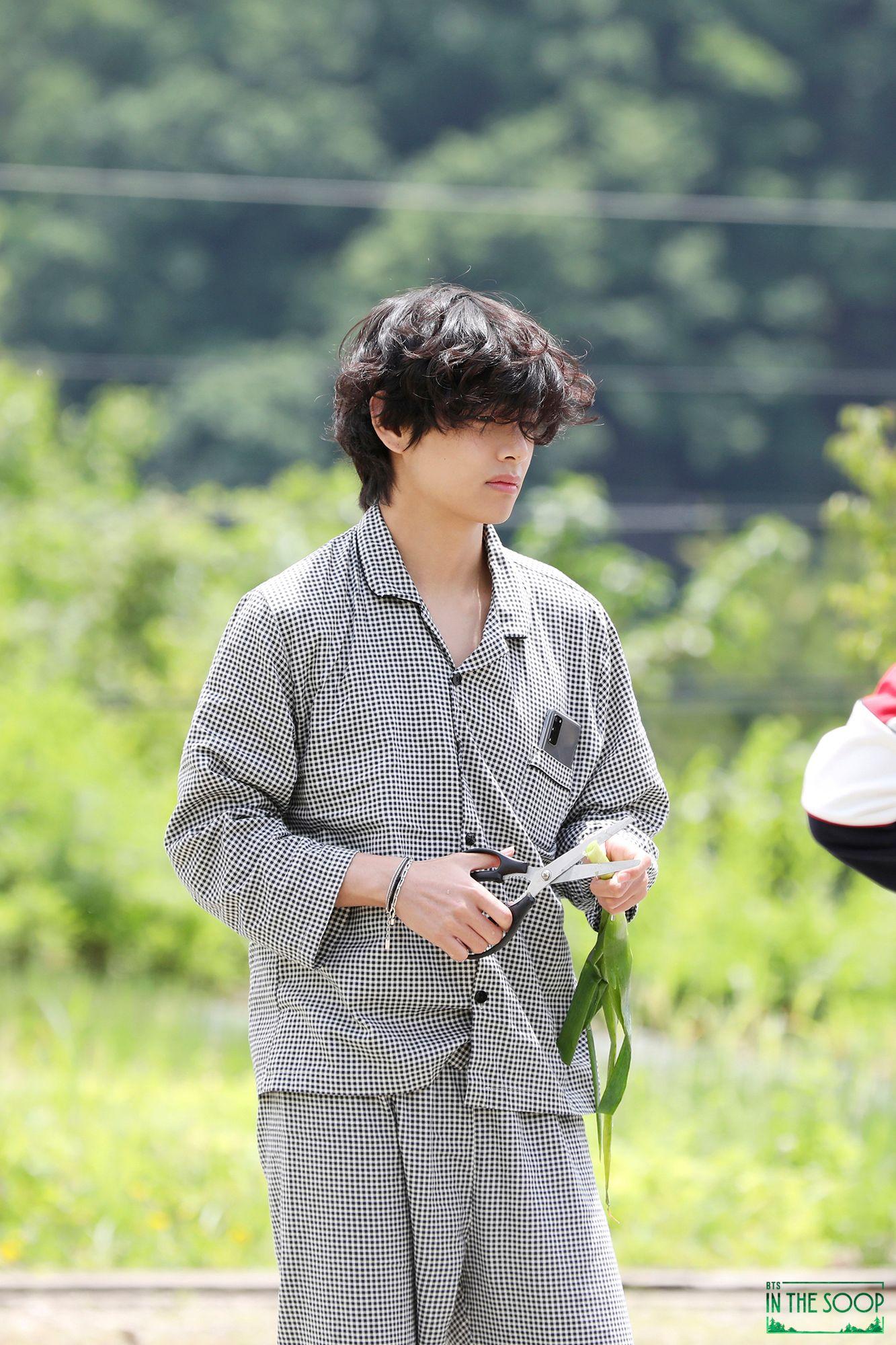 hair, v, and kim taehyung image