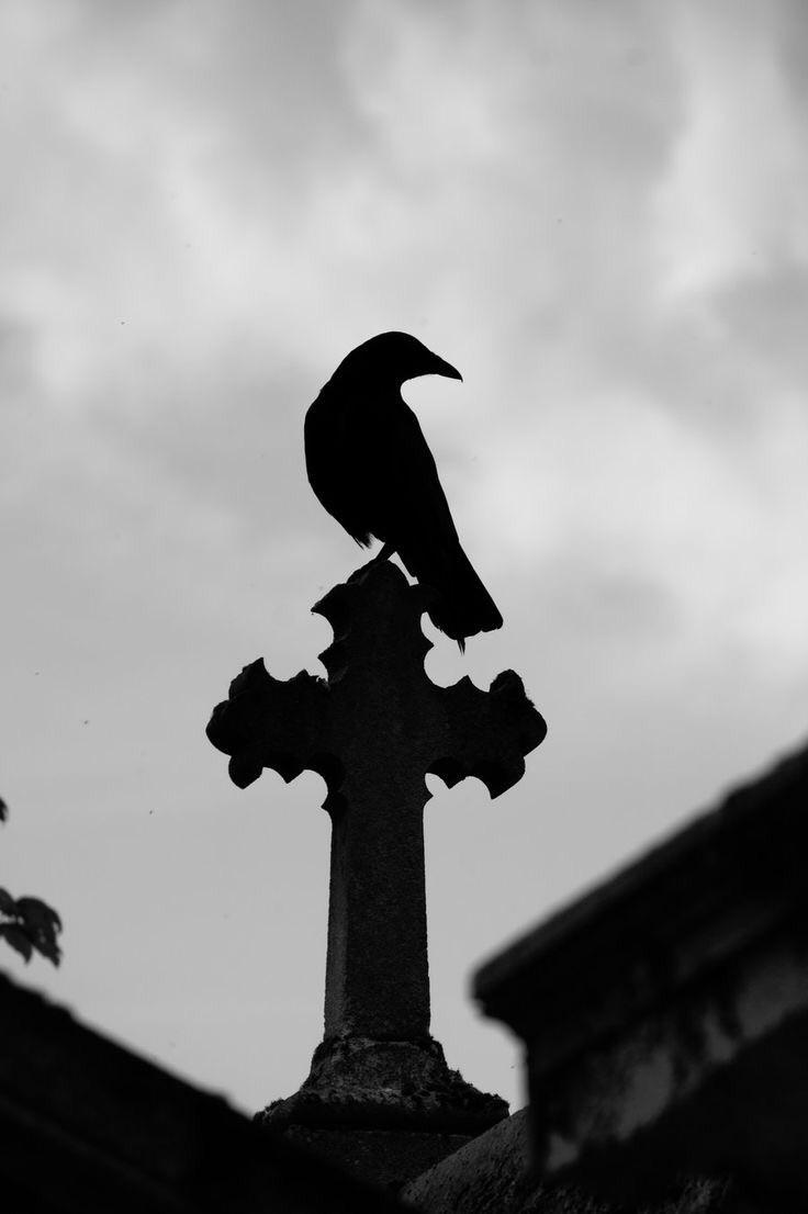 cross, crow, and raven image