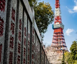 tokyo tower, tourism, and japan image