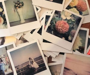 analog, analogue, and flowers image