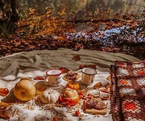 autumn, picnic, and fall image