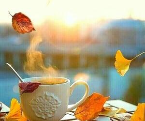 aesthetic, coffee, and sunrise image