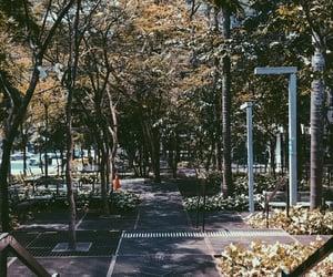 avenida paulista, green, and outside image