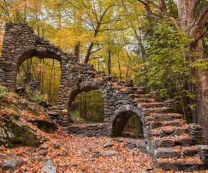autumn, forest, and staircase image