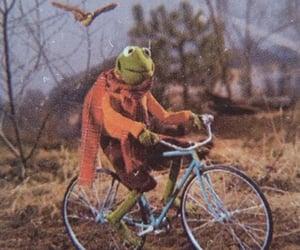art, kermit, and bike image