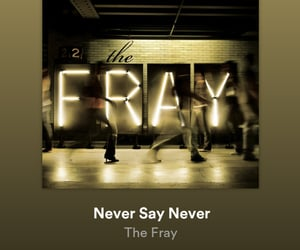 never say never and the fray image