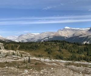 british columbia, yoho national park, and iceline trail image