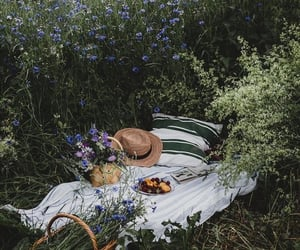 picnic, flowers, and green image