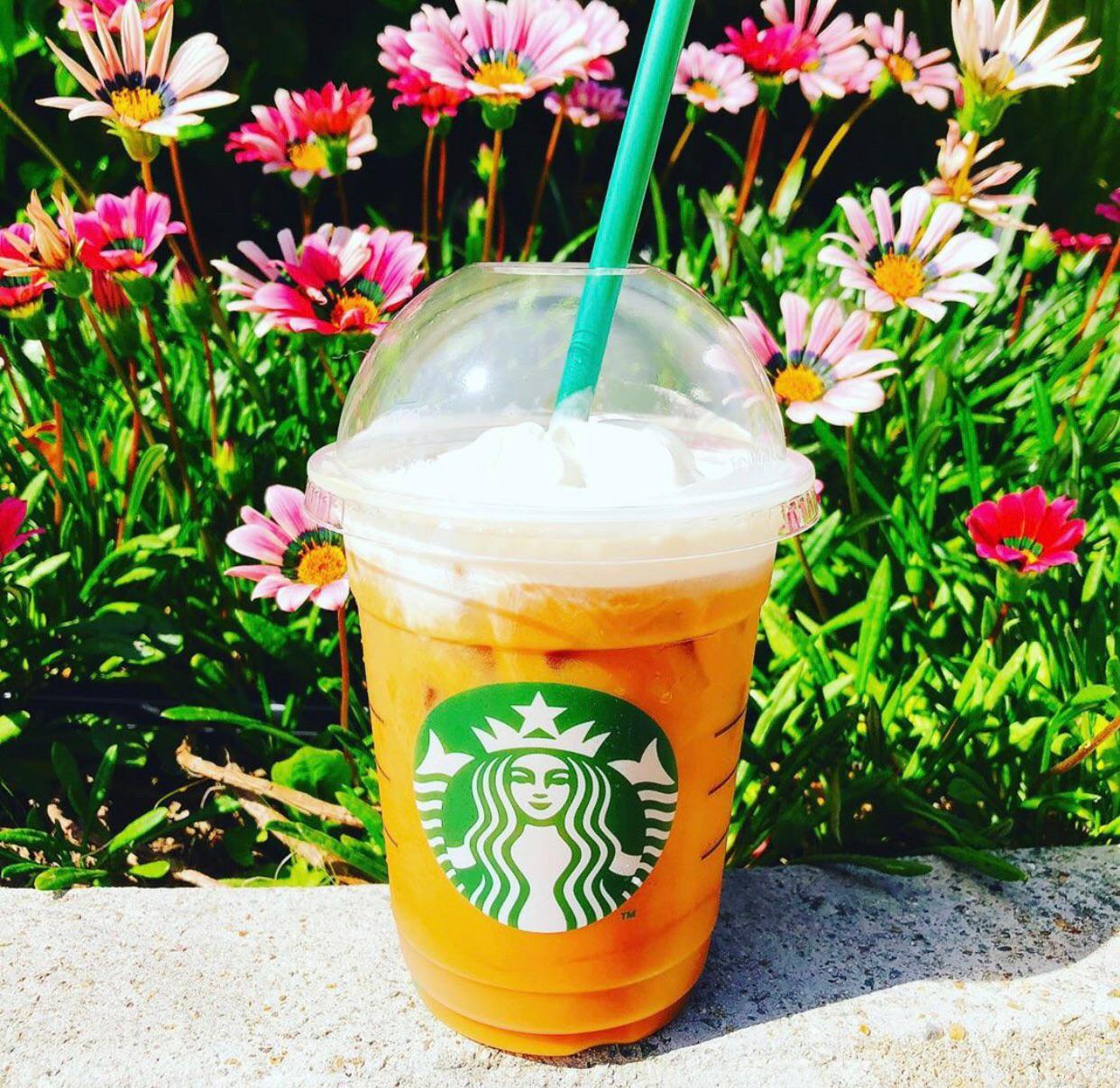 orange, summer, and tea image