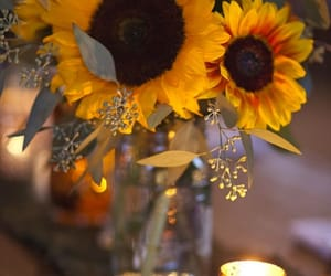 sunflower, flowers, and candle image