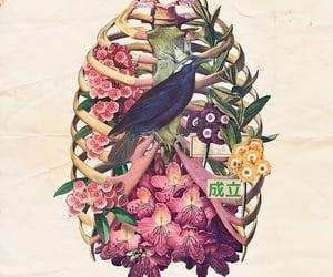 animal, bird, and flowers image