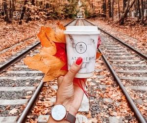 autumn, coffee, and enjoy image