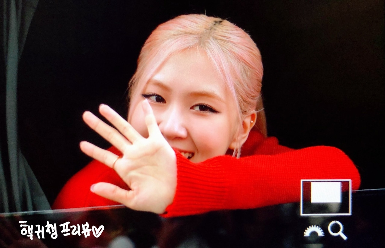preview, rose, and blackpink image