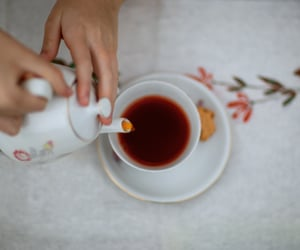 cozy, tea, and Hot image