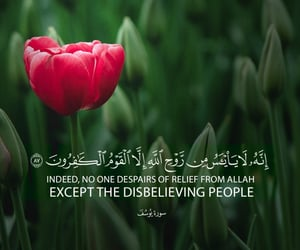 islam, allah, and seek forgiveness of allah image