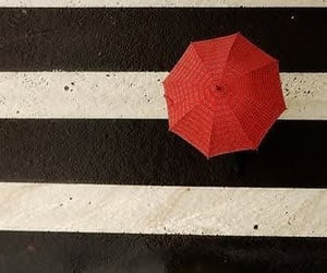black and white, red, and stripes image