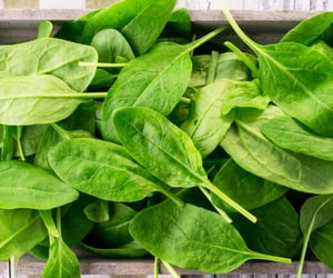 herbs, spinach, and herbal image