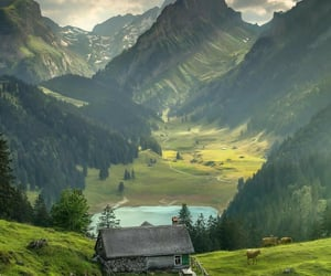 amazing, green, and mountain image