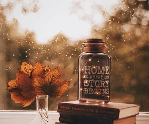 autumn, autumn colors, and book image