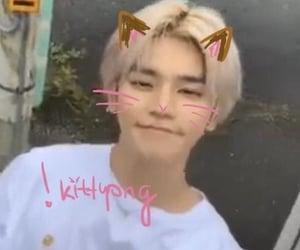 korean, kpop, and catboy image