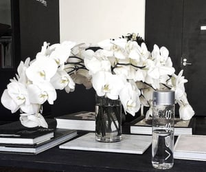 flowers, white, and classy image