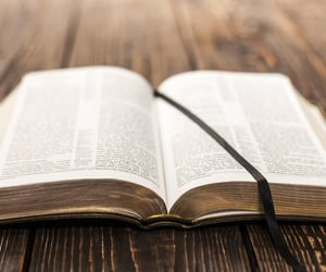 article, bible, and blog image