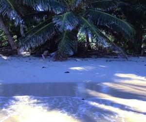 beach, shore, and beachy image