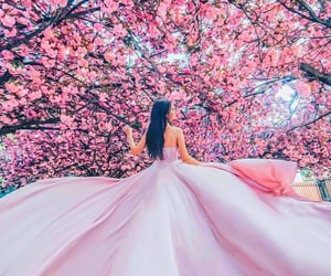 pink dress, pink, and pink flowers image