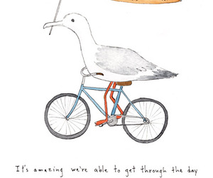 quote and seagull image