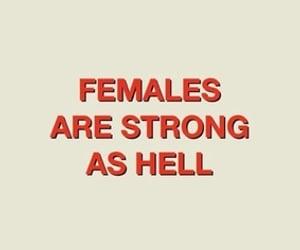 female, quotes, and feminism image