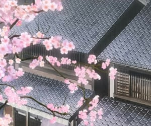 anime, cherry blossoms, and japan image