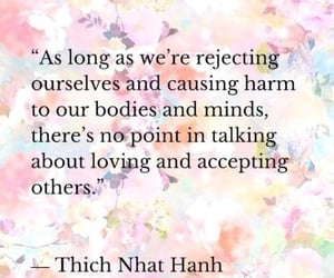 thich nhat hahn, there is no point, and rejecting ourselves image