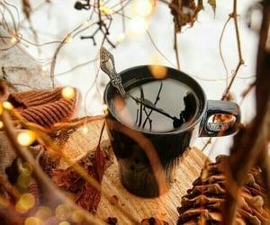 caffeine, coffee, and nature image