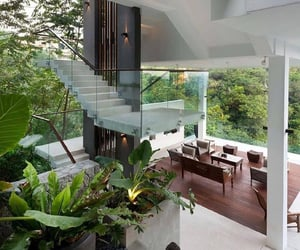 plants, house, and design image