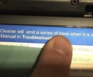bees, typo, and youhadonejob image