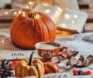 🍂 Bella Montreal 🍂 Insta: bella.montreal || Pinterest & WeHeartIt:  bella4549 || TikTok: bellamontreal || pumpkins,… | Autumn cozy, Fall  wallpaper, Fall mood board