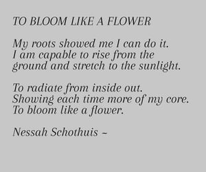 bloom, poetry, and glow up image